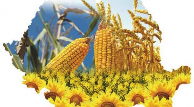 Nu vom putea dezvolta aceasta tara fara sa avem o agricultura bazata pe competitivitate